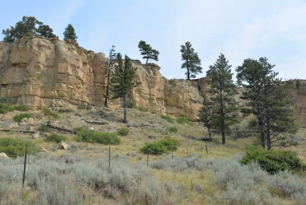 20 Acres Squaw Creek, Huntley, MT 59037 (MLS #287407) :: Search Billings Real Estate Group