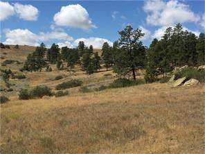 3131 Iron Horse Trail - Photo 1
