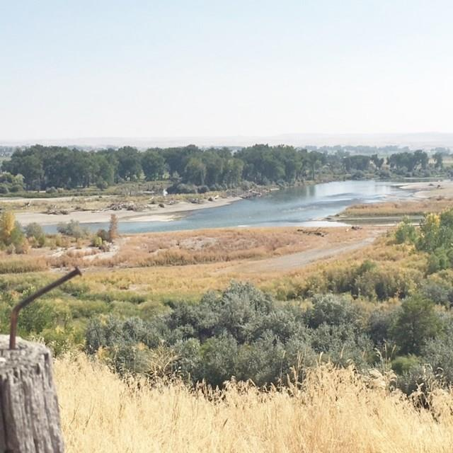 5 Yellowstone River Island, Shepherd, MT 59079 (MLS #289367) :: The Ashley Delp Team