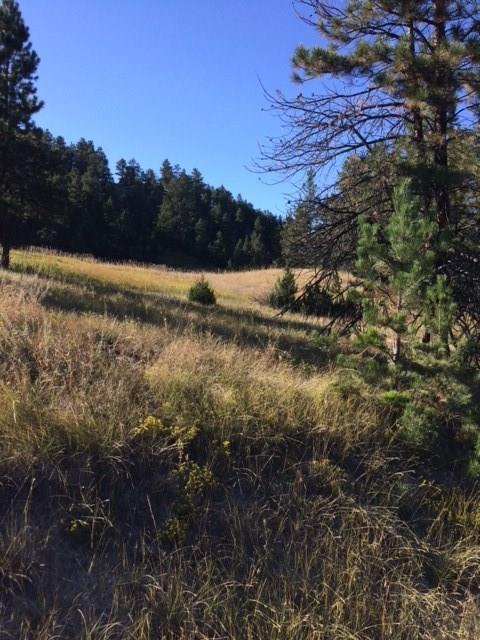 16 Bear Paw Creek Road, Columbus, MT 59019 (MLS #289390) :: The Ashley Delp Team