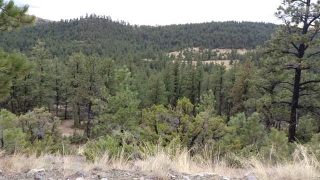LOT # 83 Haystack Coulee, Reed Point, MT 59069 (MLS #291249) :: The Ashley Delp Team
