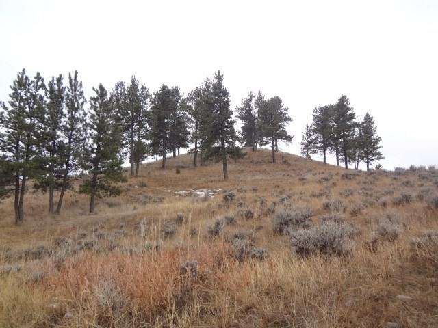 Lot 4 Ponderosa Ridge Road, Columbus, MT 59019 (MLS #293044) :: The Ashley Delp Team