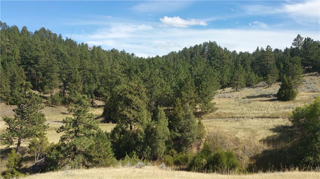 TBD Emerald Hills Drive - Photo 1