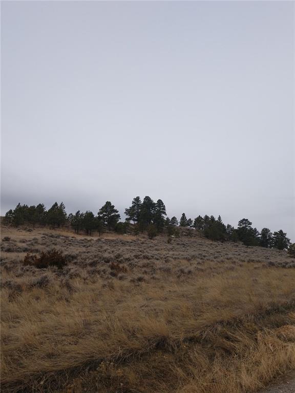 66 Well House Road, Shepherd, MT 59079 (MLS #294471) :: Search Billings Real Estate Group