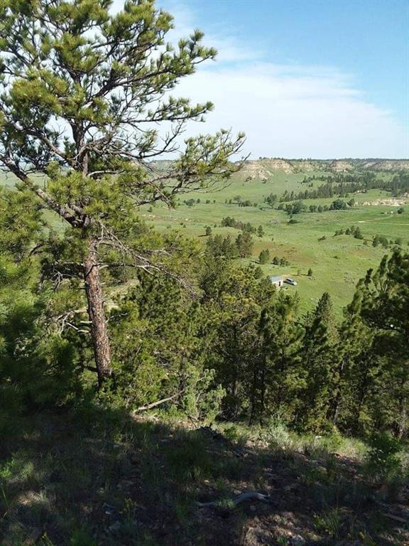 28 Wild Horse, Forsyth, MT 59327 (MLS #296043) :: Search Billings Real Estate Group