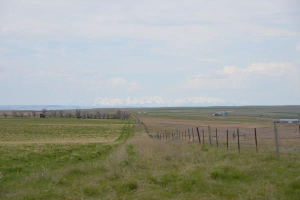 161 Acres Downer Road, Molt, MT 59057 (MLS #297259) :: Realty Billings