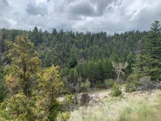 TBD Mt Hwy 2 W, Whitehall, Other-See Remarks, MT 59759 (MLS #297627) :: The Ashley Delp Team