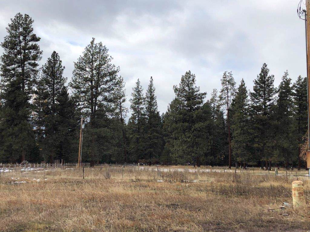 3209 Hwy 83 N, Seeley Lake - Photo 1