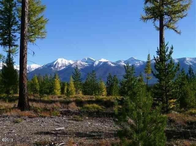 NHN Elk Creek Rd, Condon - Photo 1