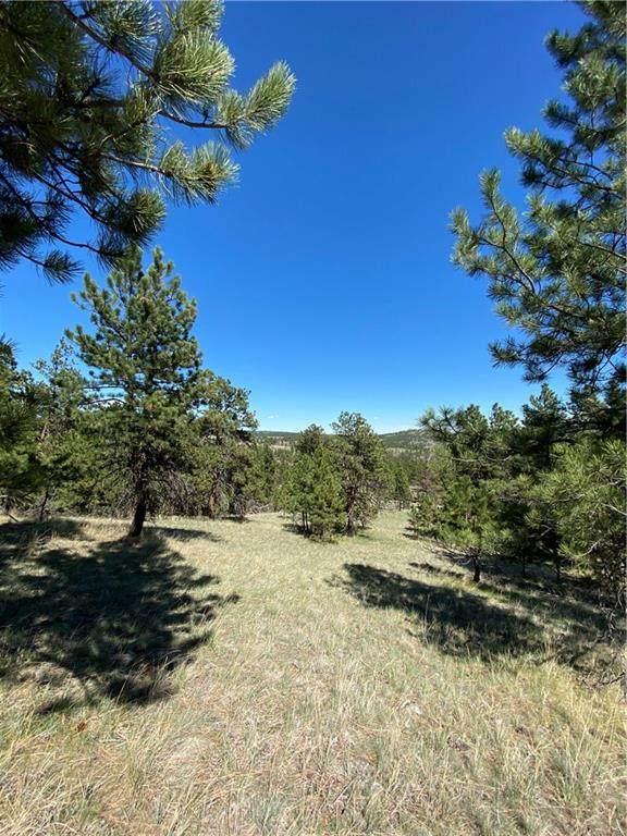 Lot 61 Wild Turkey Ridge - Photo 1