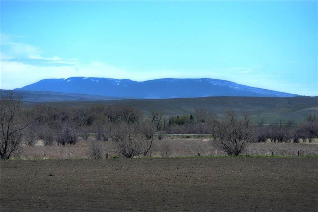 164 Acres Highway 310 - Photo 1