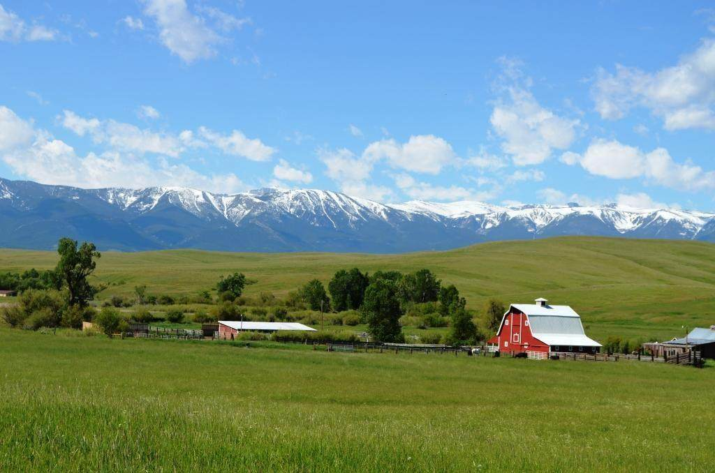 1035 Red Lodge Creek Road - Photo 1