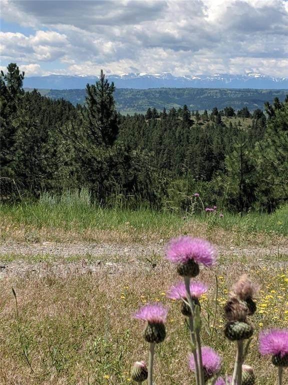 Lot 126 Bugling Elk Lane, Columbus, MT 59019 (MLS #305723) :: Search Billings Real Estate Group