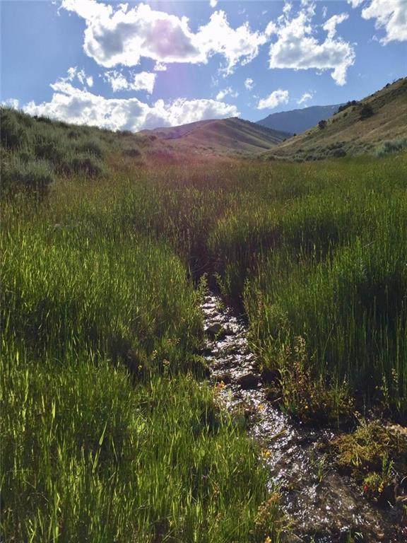 23 Freedom Trail, Belfry, MT 59108 (MLS #308749) :: The Ashley Delp Team