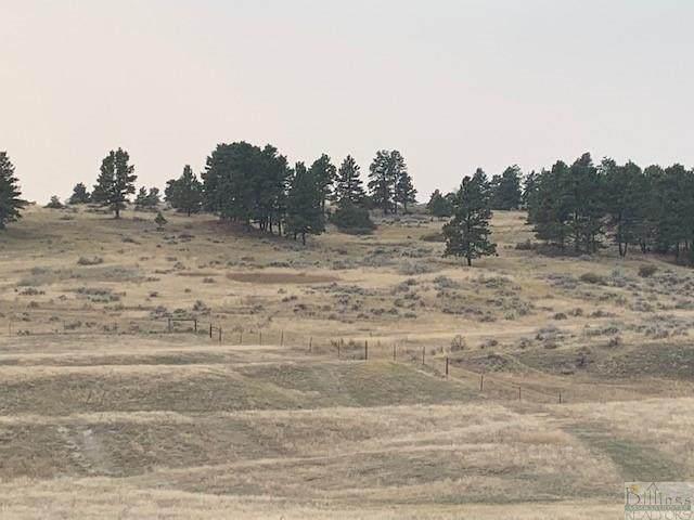 40 Acres Reno Lane - Photo 1