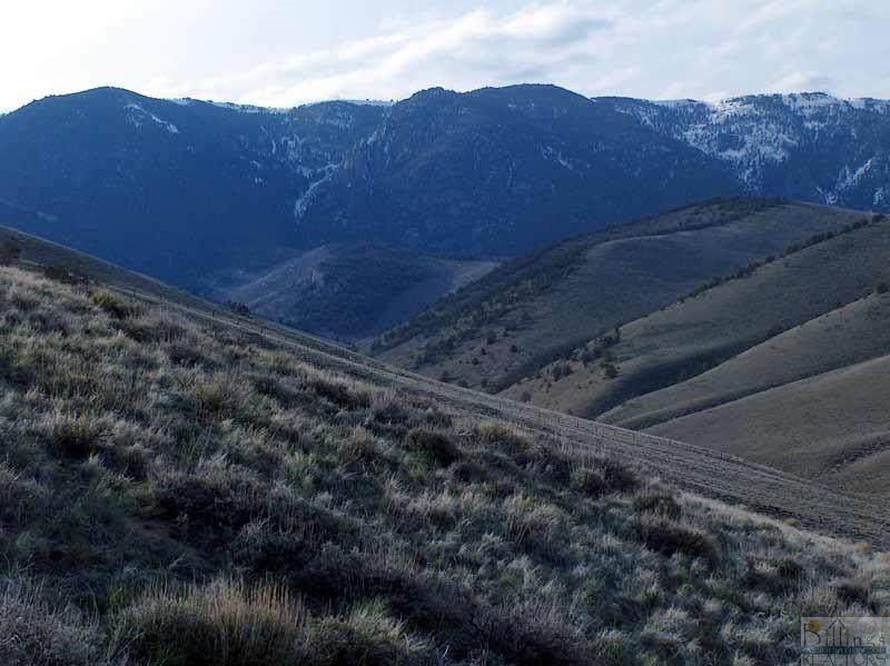 55 Freedom Trail - Photo 1