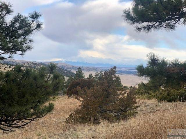 223 Wildhorse Run, Reed Point, MT 59069 (MLS #313392) :: Search Billings Real Estate Group