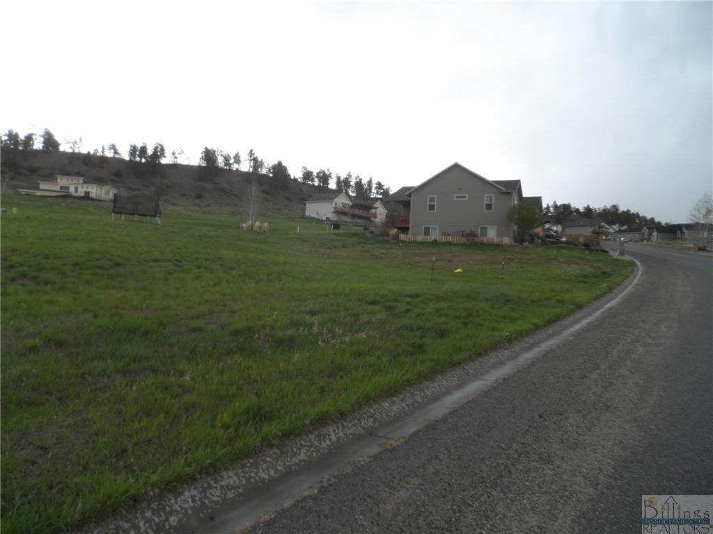 Lot 13 Castle Pines Dr - Photo 1