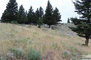 Lot 38 Eagle Ridge Place, Nye, MT 59061 (MLS #315166) :: MK Realty