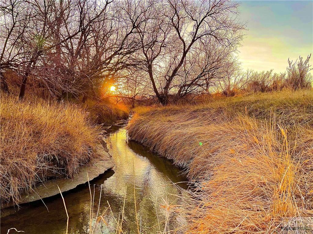 2499 Lake Elmo Drive - Photo 1