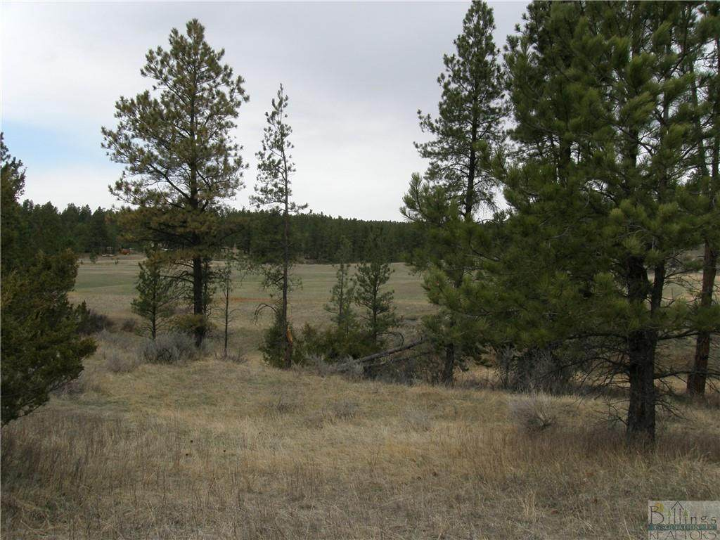 0 Tbd Hay Coulee Road - Photo 1