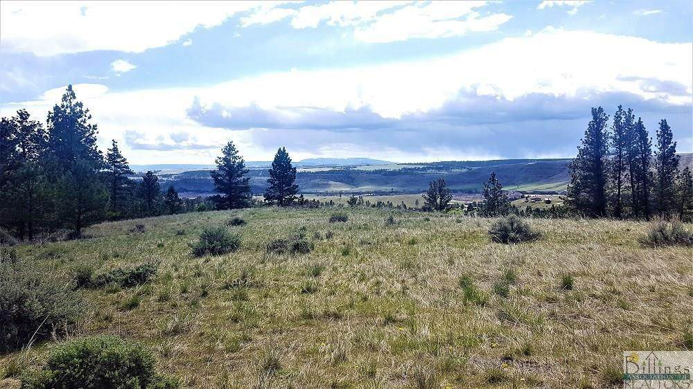 0 Crazy Mountain Vista - Photo 1