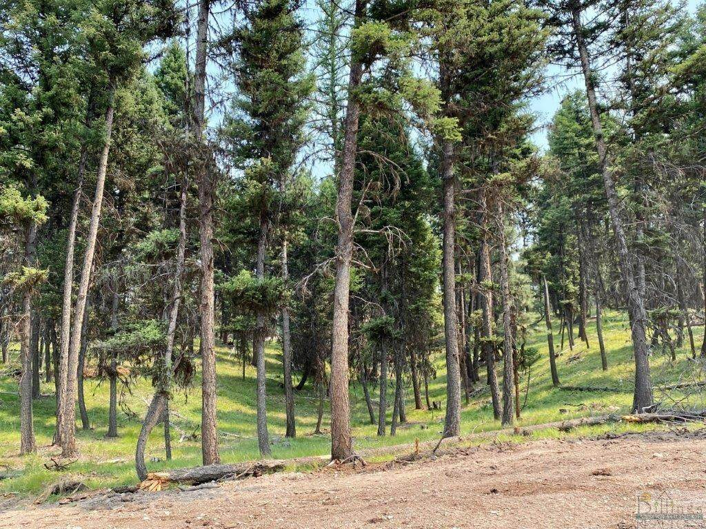 315 Seclusion Point, Seeley Lake - Photo 1