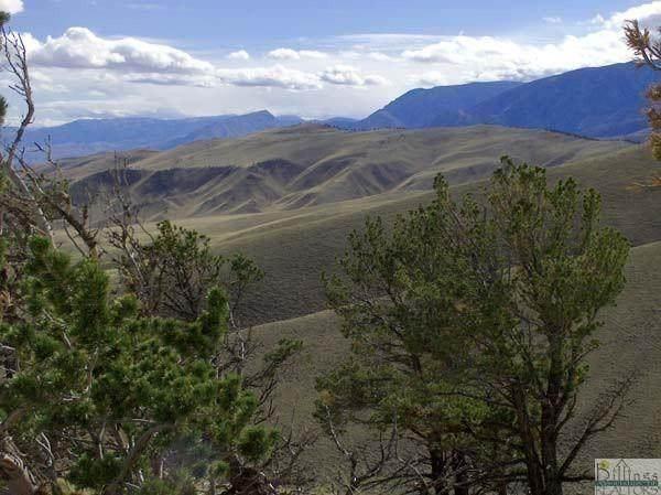 NHN Freedom Trail, Belfry, MT 59008 (MLS #322697) :: Search Billings Real Estate Group