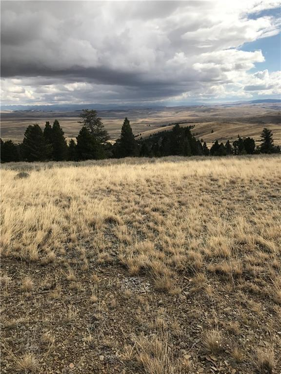 231 Mountain View Trail, Other-See Remarks, MT 59645 (MLS #281324) :: Realty Billings