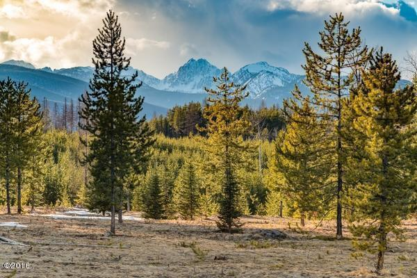 Lot 1 Cougar Run, Condon, Other-See Remarks, MT 59826 (MLS #283486) :: Realty Billings