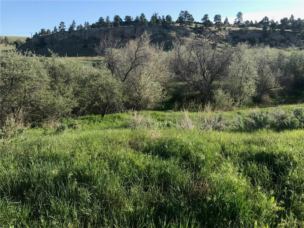 0 Alkali Creek Road - Photo 1