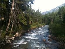 NSN Us Hwy 212, Red Lodge, MT 59068 (MLS #285689) :: Realty Billings