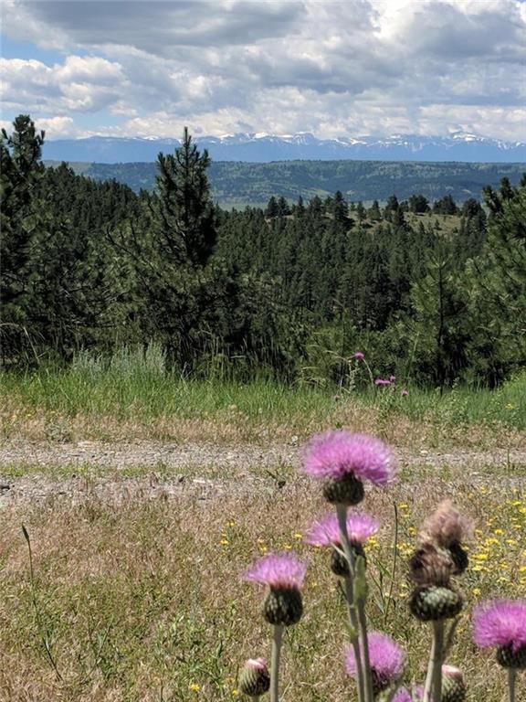 Lot 126 Bugling Elk Lane, Columbus, MT 59019 (MLS #286882) :: Realty Billings