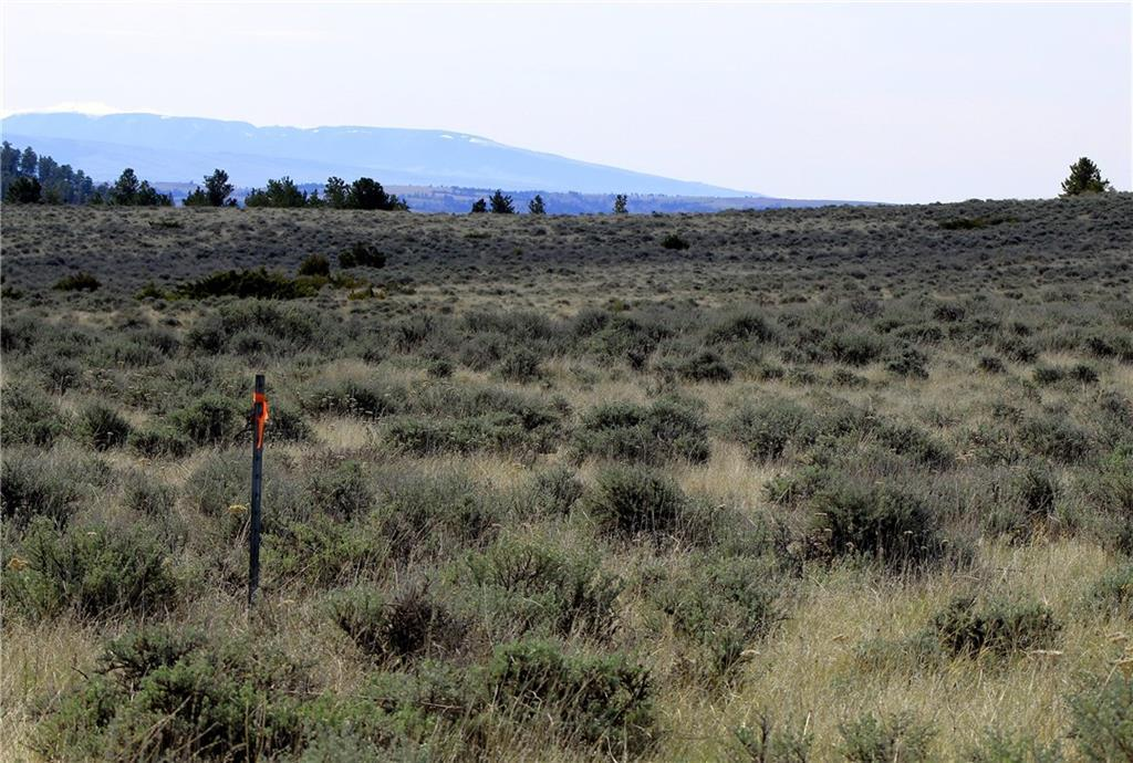 577 Pine Crest - Photo 1