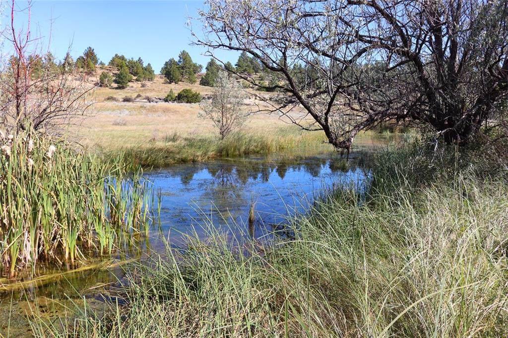 2139 Alkali Creek Road - Photo 1