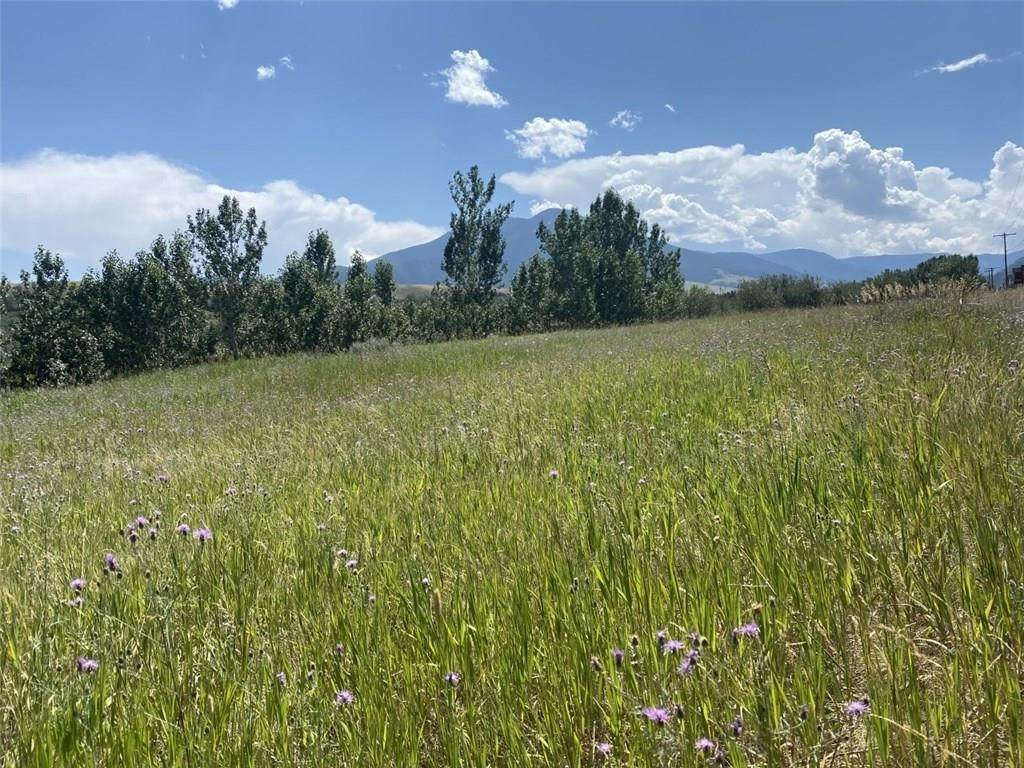 Lot 1A Beartooth Mountain Estates - Photo 1