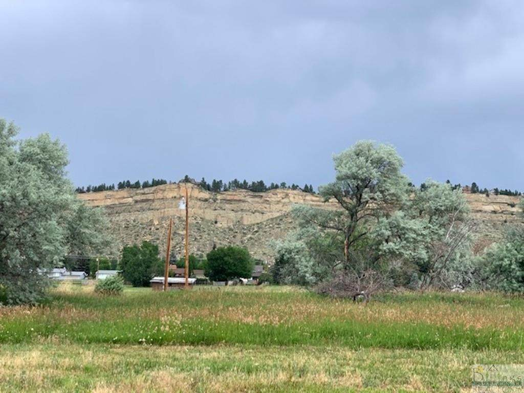 4741 Gold Creek Trail - Photo 1