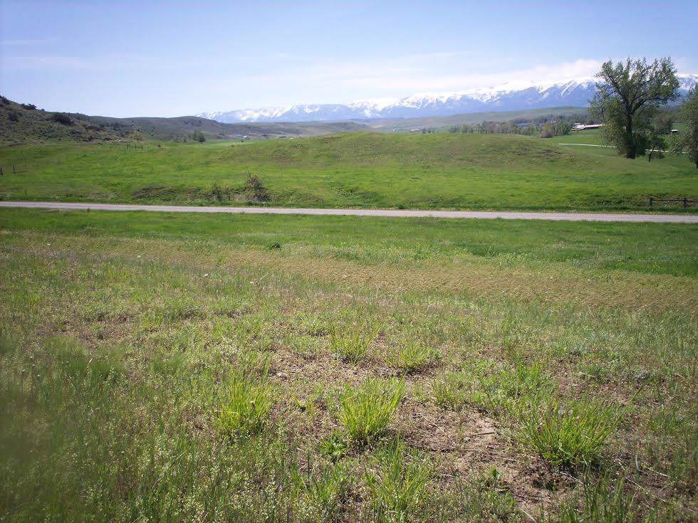 0 Scenic Valley View Road - Photo 1