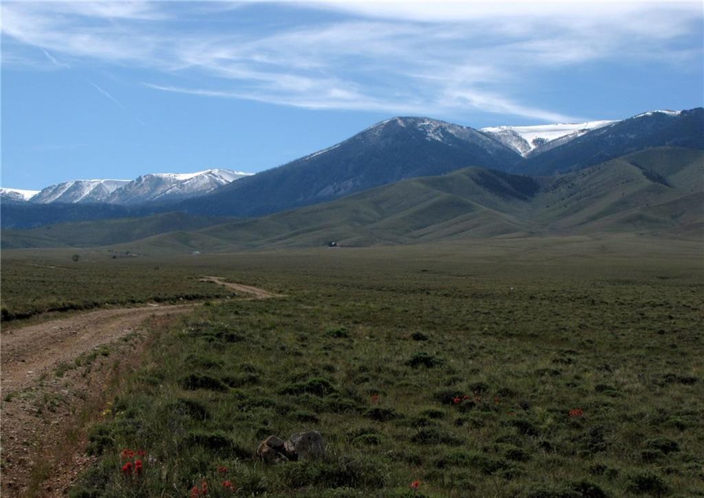 17 Talon Trail - Photo 1