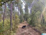 Cold Branch Road - Photo 23