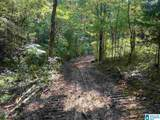 Cold Branch Road - Photo 26