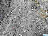 Cold Branch Road - Photo 27