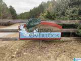 0 Sipsey Overlook Dr - Photo 1