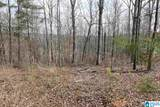 LOT 27 Co Rd 4315 - Photo 5