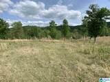 0 Pleasant Acres Trail - Photo 17