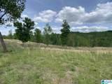 0 Pleasant Acres Trail - Photo 19