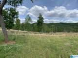 0 Pleasant Acres Trail - Photo 5