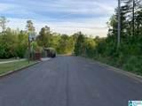0 Alexandria Jacksonville Highway - Photo 6