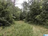 0 Carleton Point Drive - Photo 3