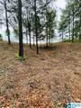Paint Creek Overlook - Photo 10